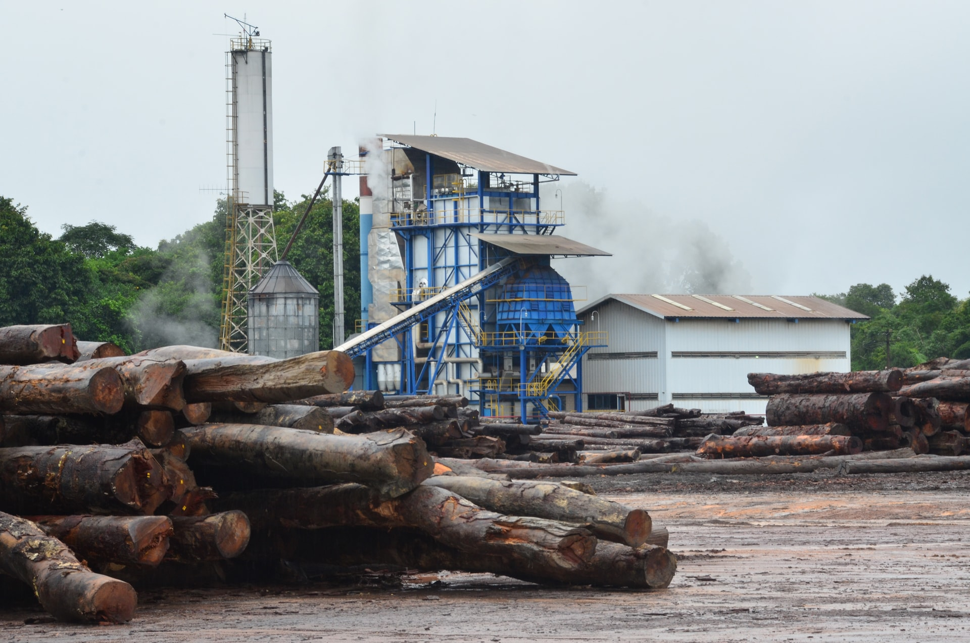 Holzfabrik